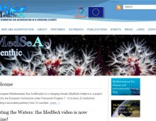 BESPOKE BUSINESS WEBSITES